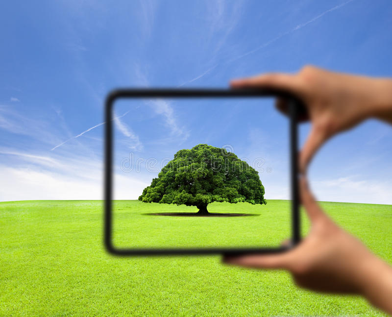 Frame e foco da terra arrendada da mão imagem de stock royalty free