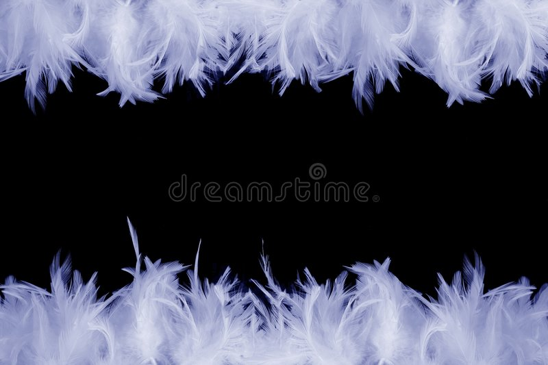 Frame of feathers stock photos