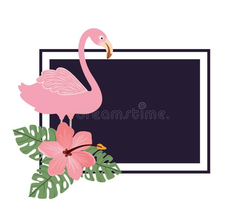 Frame with flemish and summer flower vector illustration