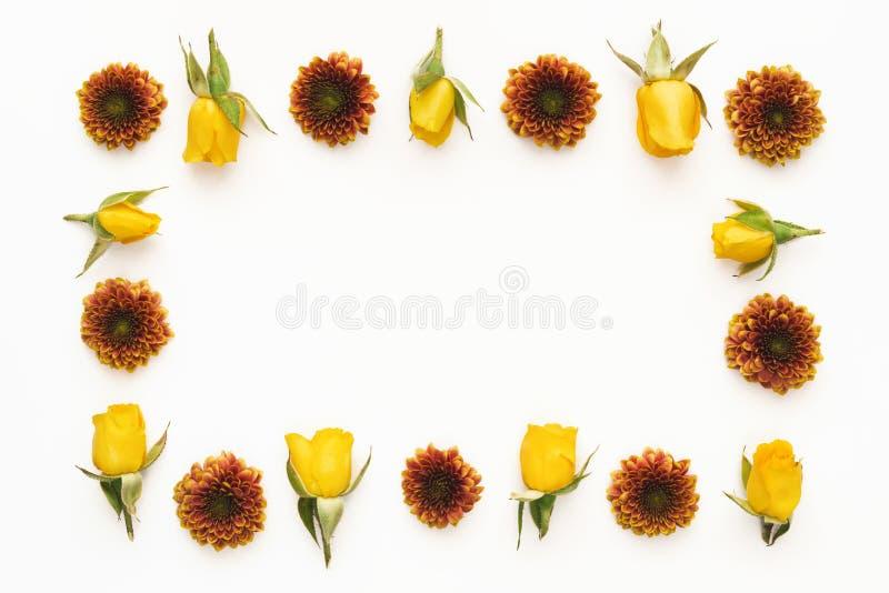 Frame floral colorido fotografia de stock
