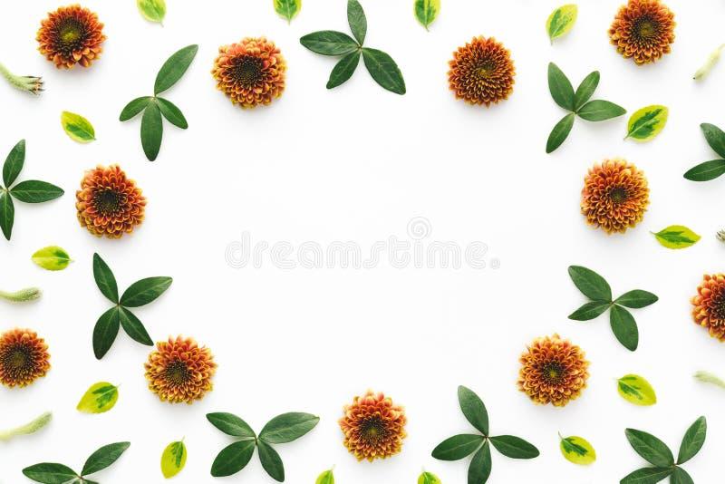 Frame floral colorido fotos de stock