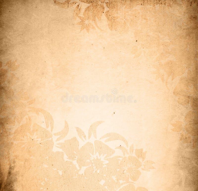 Frame floral dos fundos do estilo ilustração do vetor