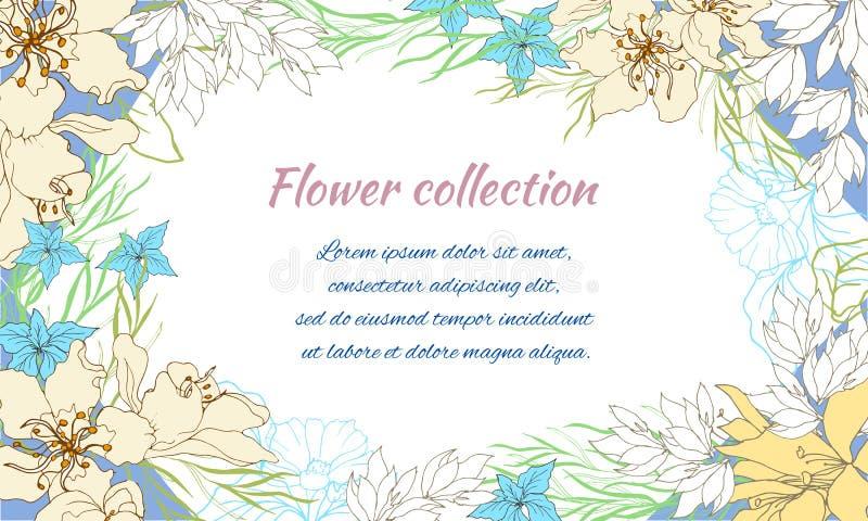 Frame floral para o texto Cartão para felicitações com flores da mola em um fundo branco Ilustra??o do vetor ilustração do vetor