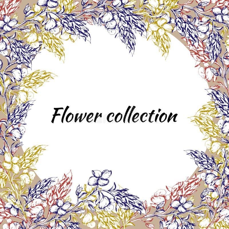 Frame floral para o texto Flores tiradas do contorno para a decoração, papel, cartões, cumprimentos Ilustra??o do vetor ilustração do vetor