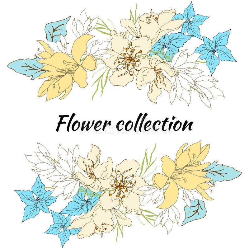 Frame floral para o texto Grupo de flores do vetor Flores desenhados à mão do vintage no fundo branco Ilustra??o do vetor ilustração stock