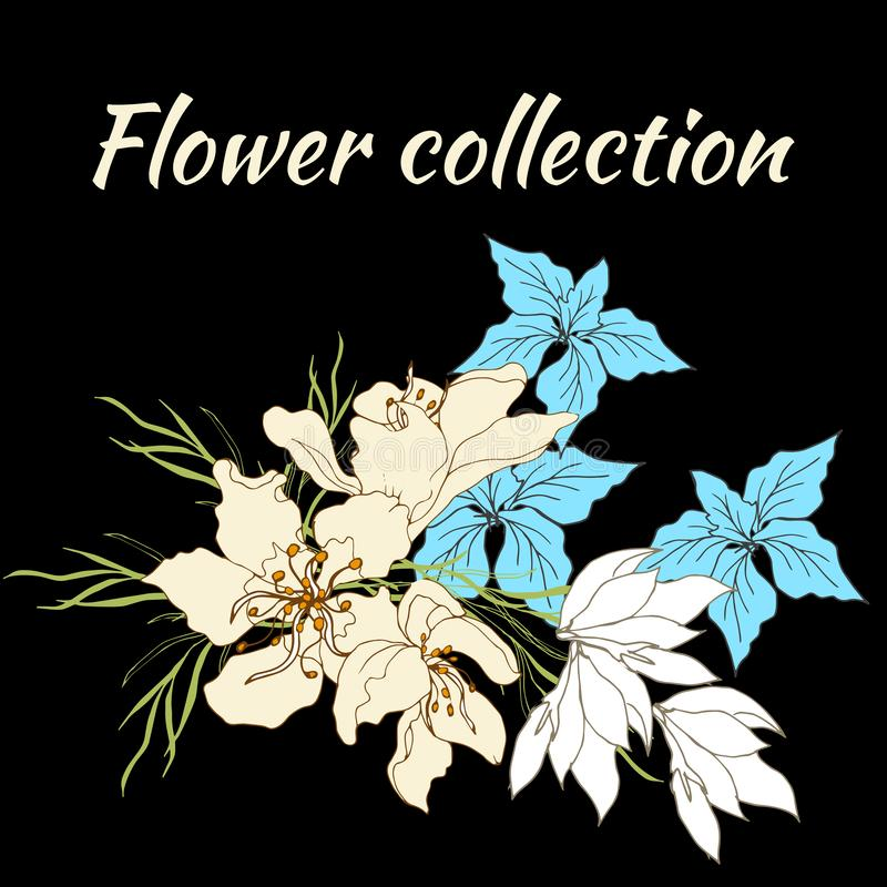 Frame floral para o texto Grupo de flores do vetor Flores tiradas m?o do vintage no fundo preto Ilustra??o do vetor Estilo do vin ilustração do vetor
