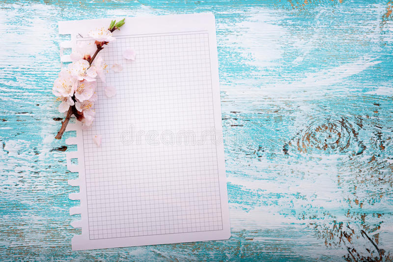 Frame with flowering branches on wooden board stock photo