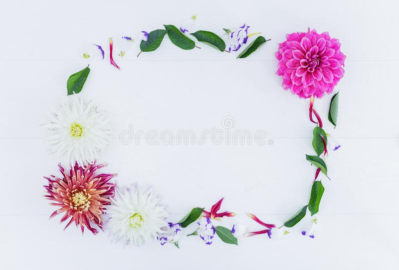 Frame of flowers with astra peony and leaves. Top view. royalty free stock photography