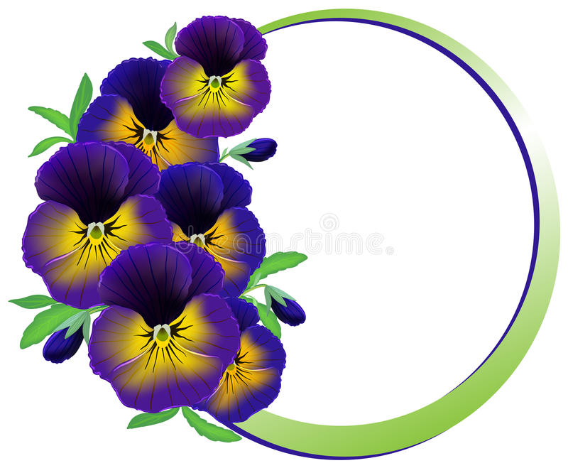 Frame of flowers pansies vector illustration