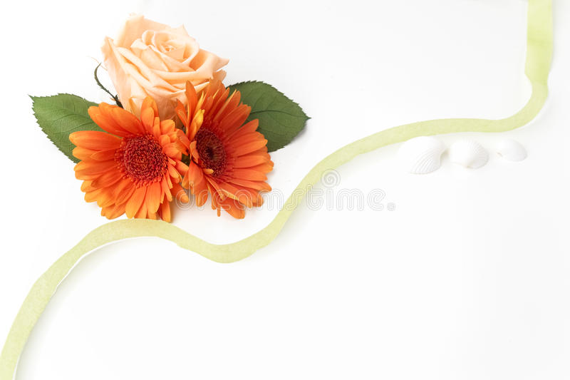 Frame of flowers on a white table ,with space for text, summer theme. Top view. Flat lay. Frame of flowers on a white table ,with space for text, summer theme royalty free stock image