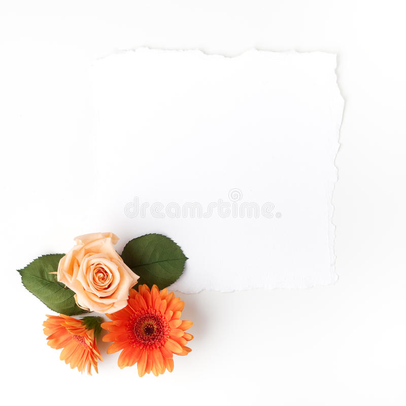 Frame of flowers on a white table , with space for text, summer theme. Top view. Flat lay. Frame of flowers on a white table , with space for text, summer theme royalty free stock photo