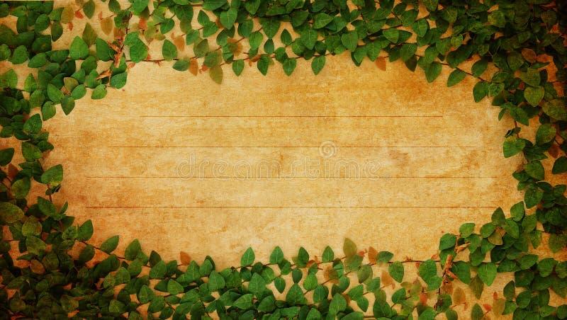 Frame fresco verde das folhas ilustração royalty free