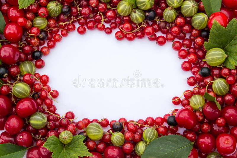 Frame of fresh berries (cherries, red and black currants, gooseberries) with green leaves stock images