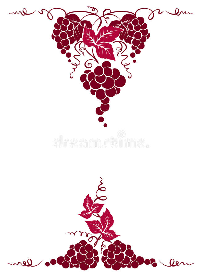 Download Frame from grapes stock vector. Image of design, agriculture - 83706152