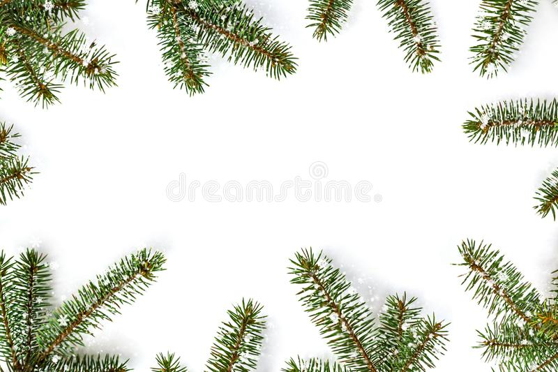 Frame of green fir branches on white background - christmas composition, new year winter background. Flat lay, top view with copy royalty free stock photos