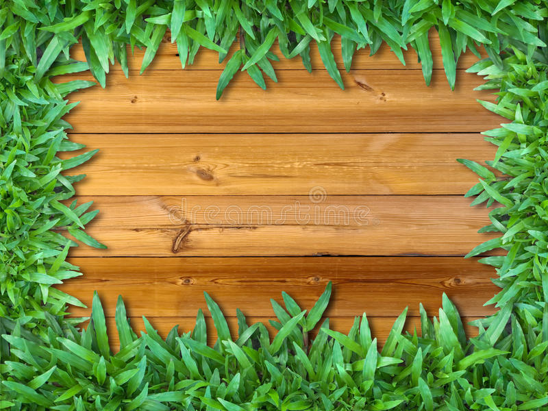 Download Frame Of Green Grass On Wood Stock Image - Image: 21936939