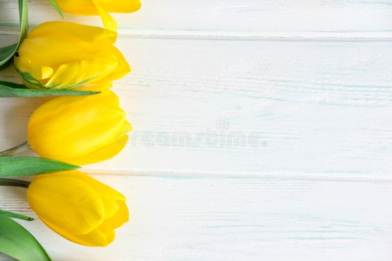 Frame for greeting card text. Banner with yellow tulips on a white wooden background. Layout design basis for greeting card mom,. Frame for greeting card text stock images