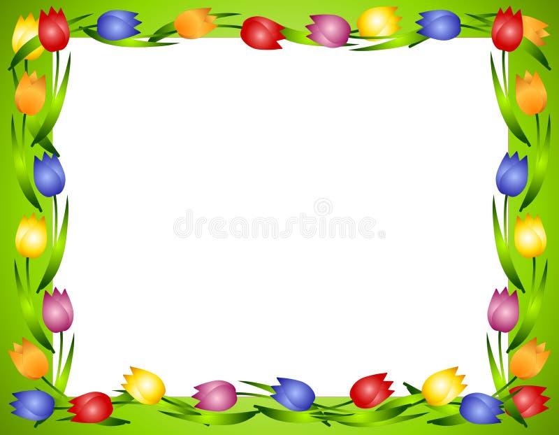 Frame of Grens 2 van de Bloem van de Tulpen van de lente vector illustratie
