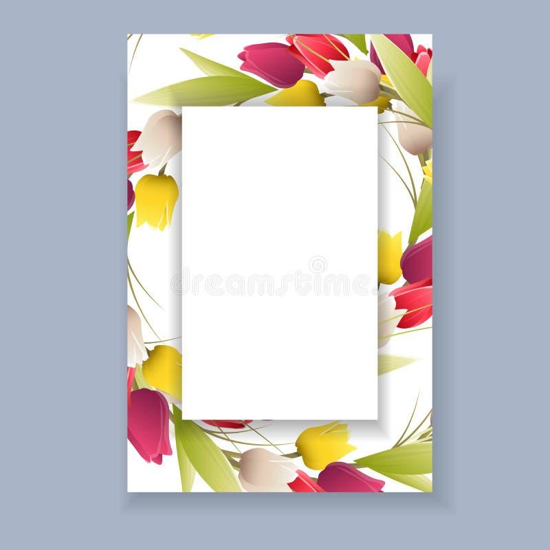 Frame isolado do Tulip ilustração stock