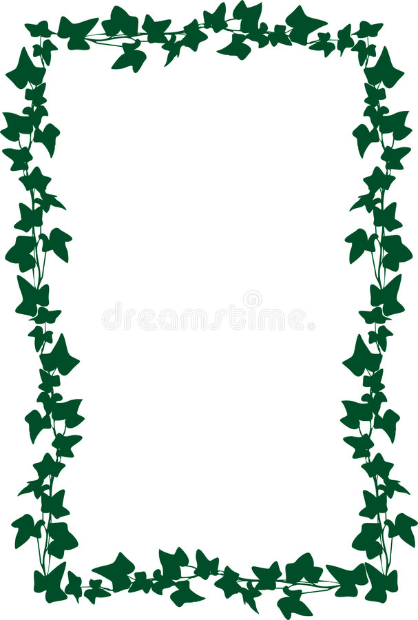 Frame from an ivy, vector stock illustration