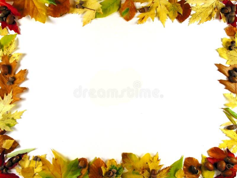 Download Frame of leafs III stock image. Image of green, leaf, details - 288719