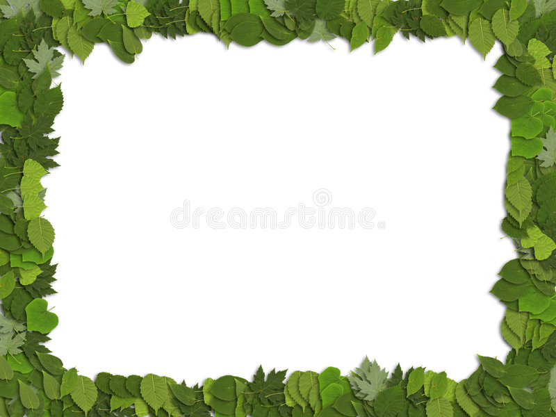 Frame leaves stock image