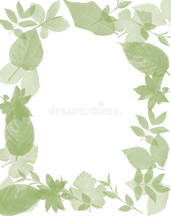 Frame leaves royalty free stock image