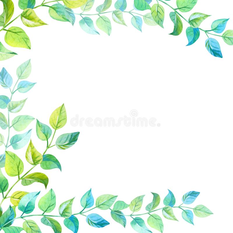 Frame of leaves. Watercolor illustration with green twigs on a white background. stock illustration