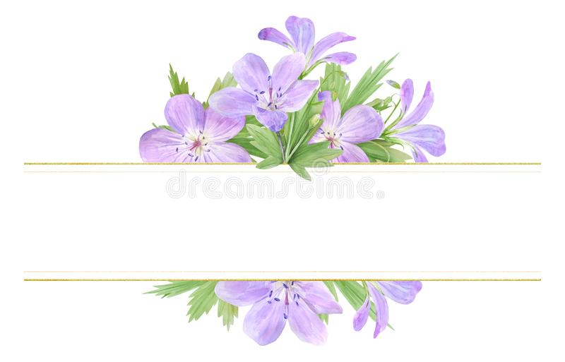 Frame of lilac watercolor geranium flowers isolated on white background. Perfect for logo, design, cosmetics design, package, stock photography