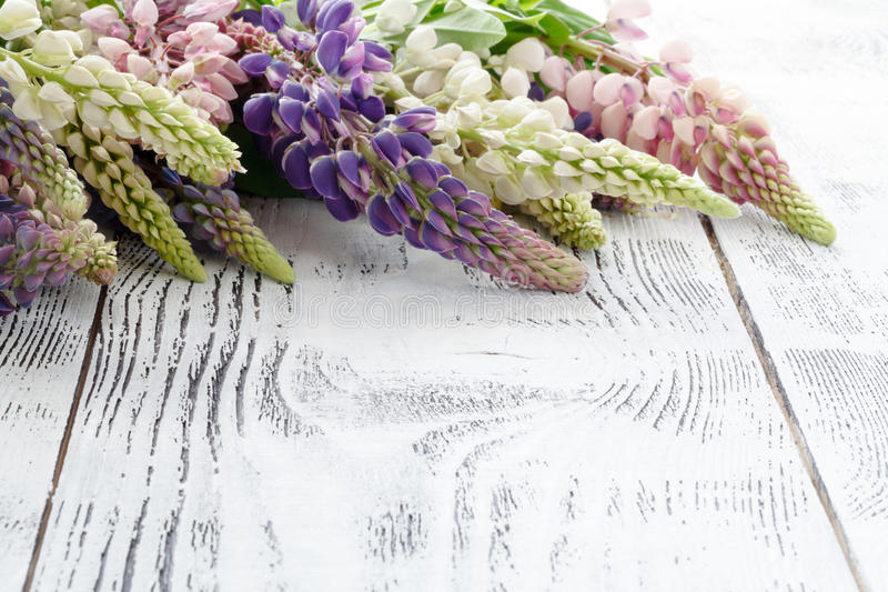 Frame from lupine flowers an old wooden painted background royalty free stock photos