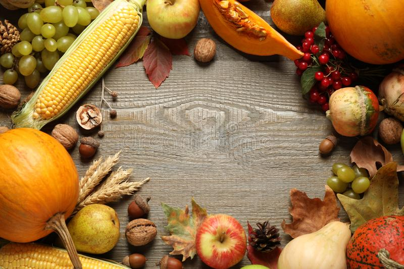Frame made of autumn vegetables and fruits on background, top view with space for text. Happy Thanksgiving day stock photos
