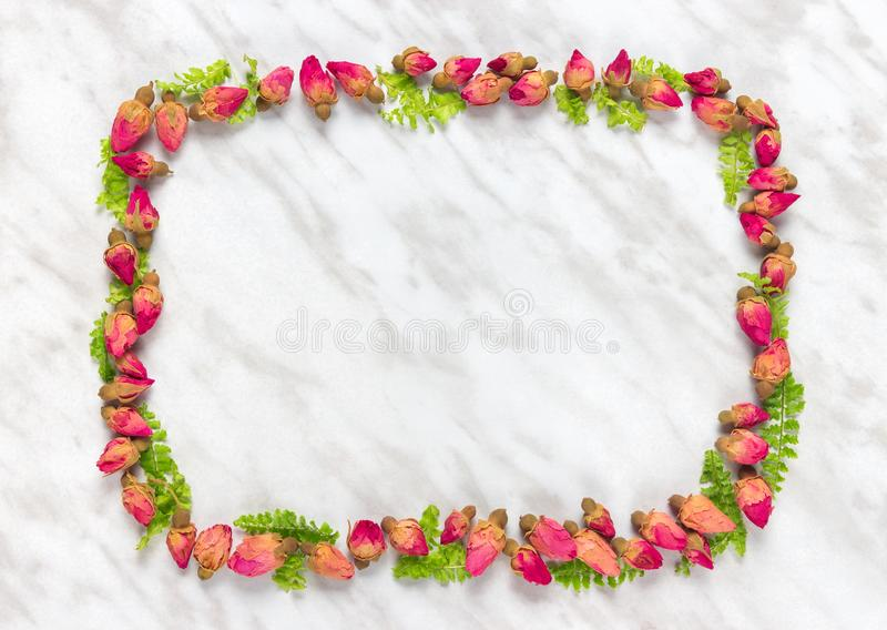 Frame made of dried roses and green leaves royalty free stock photo