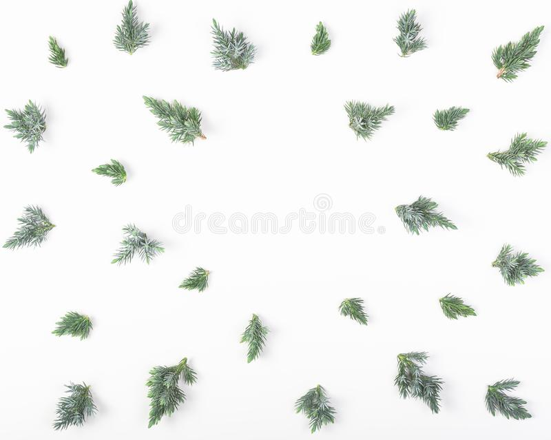 Frame made of juniper branches isolated on white background. Top view. Flat lay. Christmas or New year composition. Frame made of juniper branches isolated on stock photos