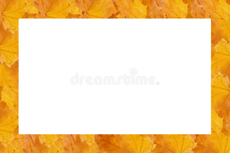 Download Frame Made Of Rows Of Leaves Stock Photo - Image: 11242174
