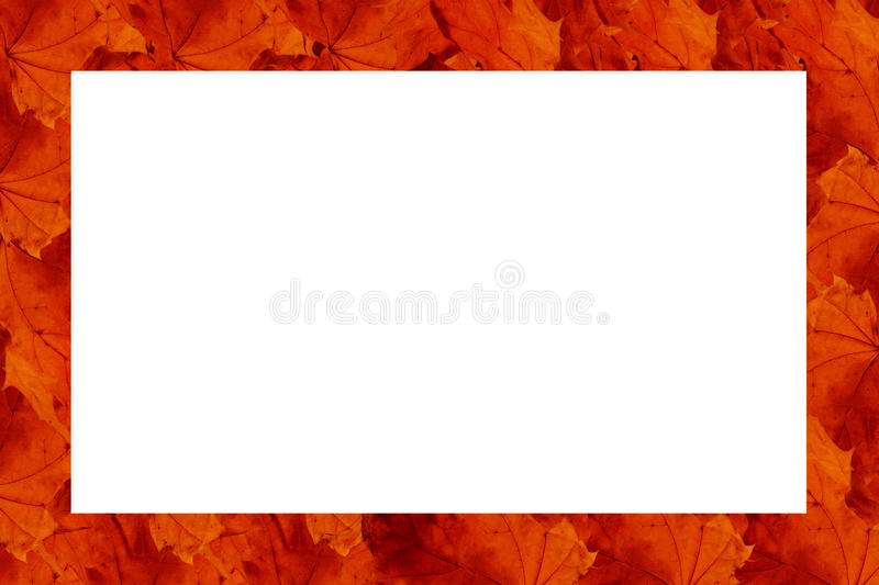 Download Frame Made Of Rows Of Red Leaves Stock Photo - Image: 11133356