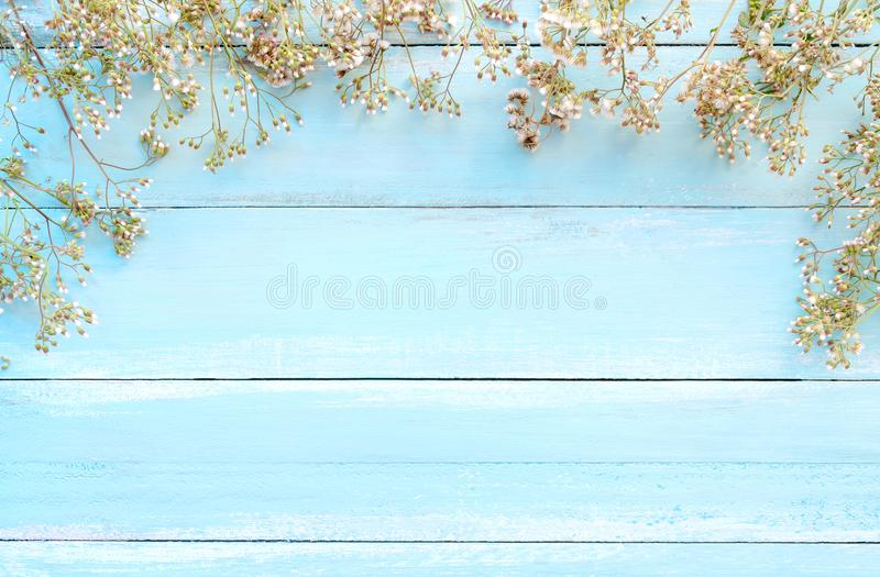 Frame made of white wild flowers on blue wooden background. royalty free stock photo