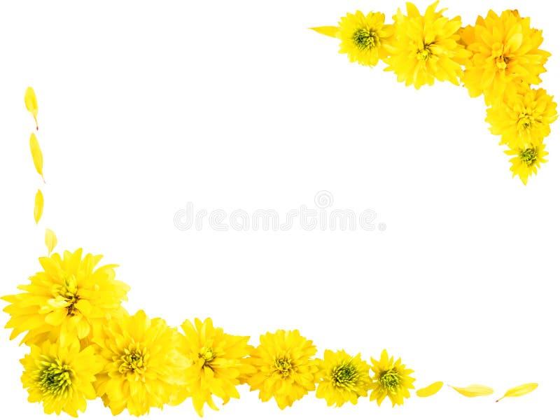 Frame met gele bloemen royalty-vrije stock afbeelding