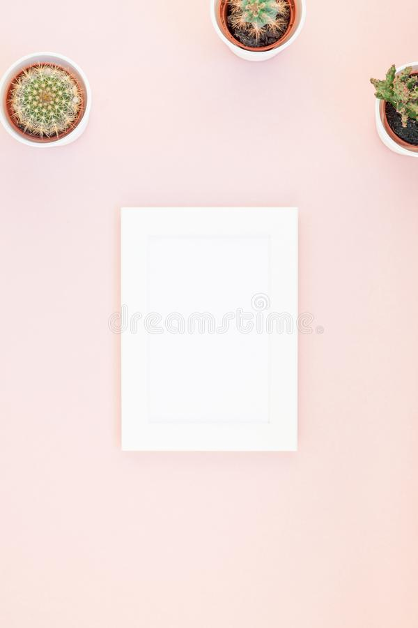 Free Frame Mock Up With Decorative Cactuses Royalty Free Stock Photos - 121809588