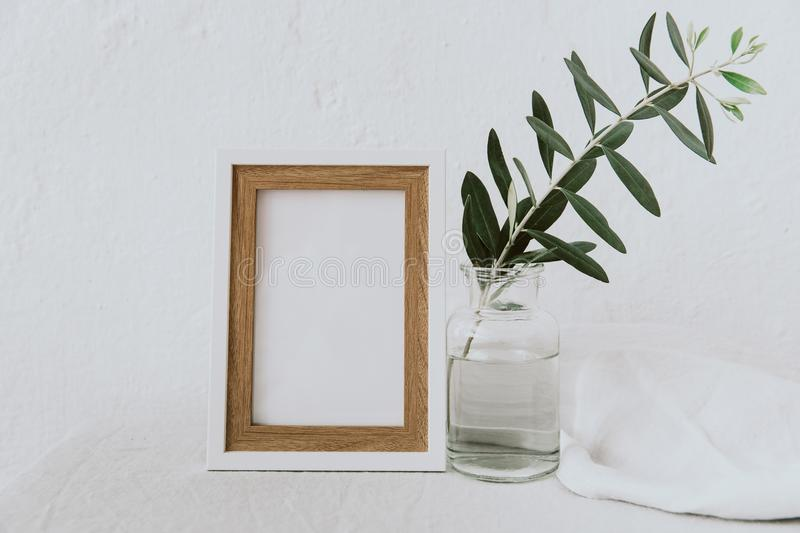 Frame mockup, olive branch in glass bottle, pitcher, styled minimalist clean image royalty free stock images