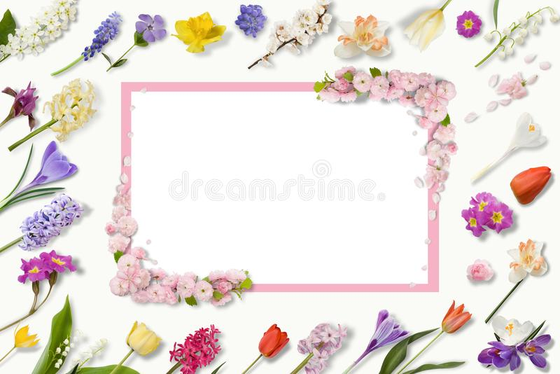 Frame of multi-colored flowers, green leaves, branches on white background. Flat lay, top view. Floral pattern. Pattern. Of flowers. Flowers pattern texture vector illustration