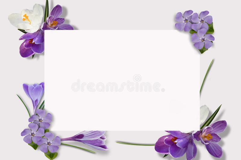 Frame of multi-colored flowers, green leaves, branches on white background. Flat lay, top view. Floral pattern. Pattern royalty free illustration