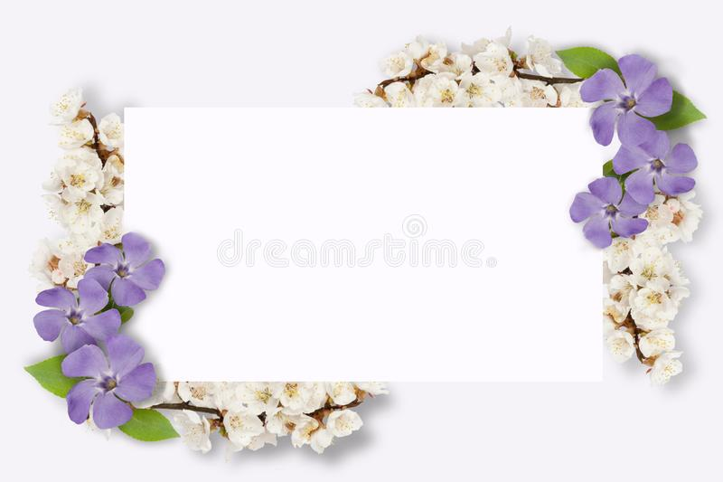 Frame of multi-colored flowers, green leaves, branches on white background. Flat lay, top view. Floral pattern. Pattern vector illustration