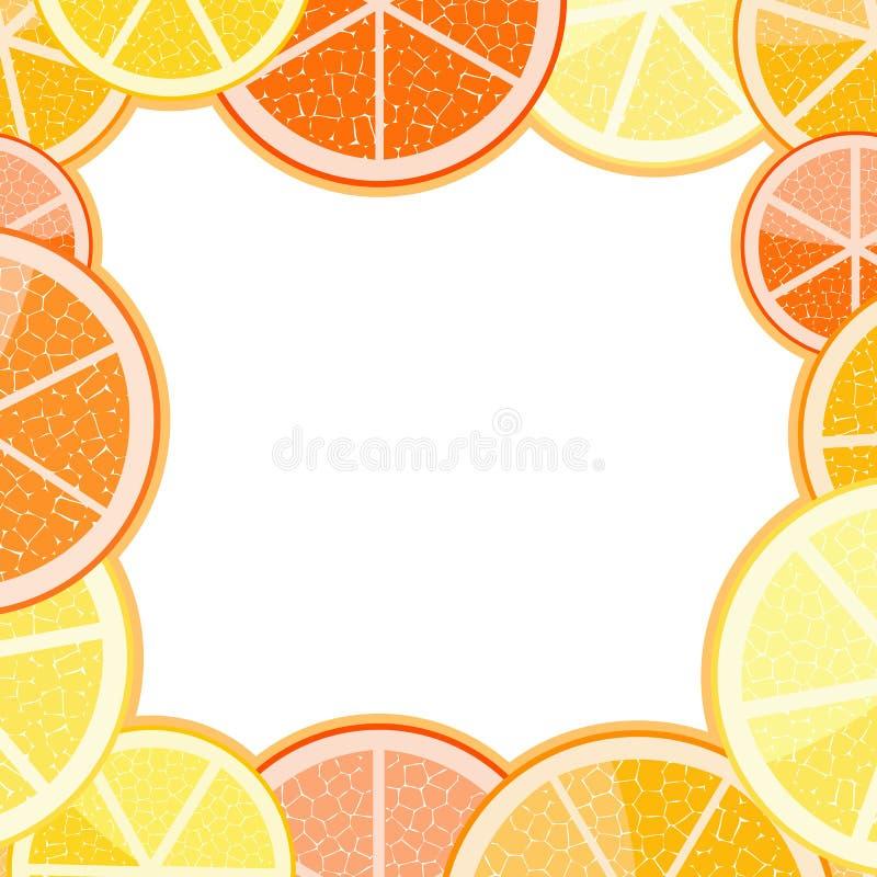 Frame of orange grapefruit. On ligth background stock illustration