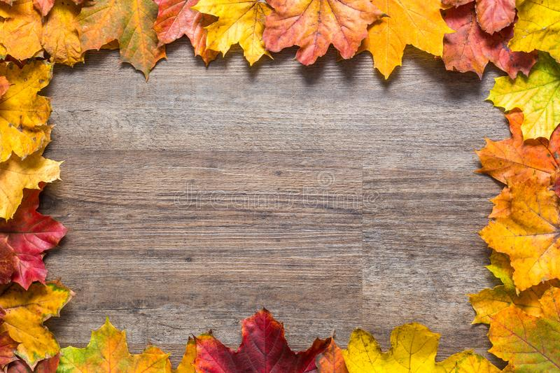 Frame out of colourful autumn leaves on wooden background. Frame out of colourful autumn leaves on a light wooden background royalty free stock image