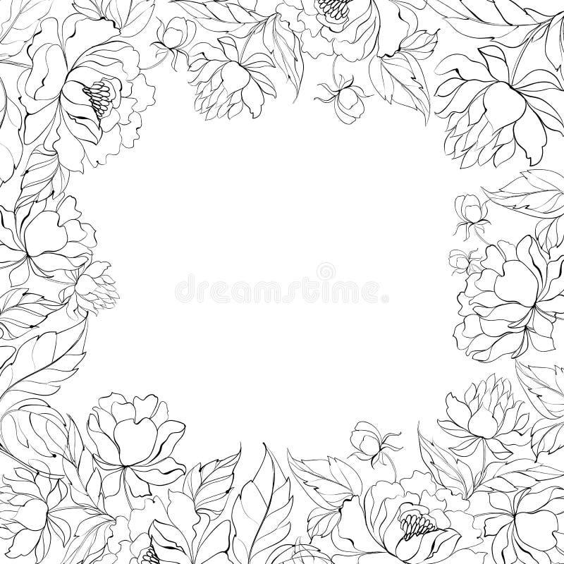 Frame of Peony. stock illustration