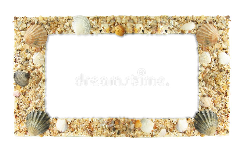 Download Frame photos of shells stock photo. Image of beauty, frame - 15257086