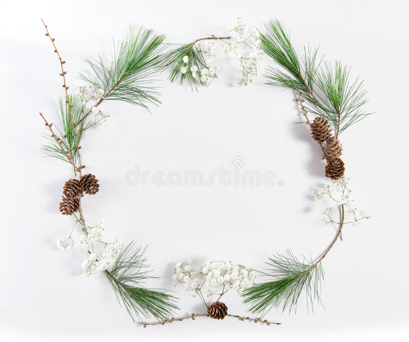 Frame pine tree branches cones Christmas holidays flat lay. Frame from pine tree branches with cones on white background. Christmas holidays flat lay royalty free stock image