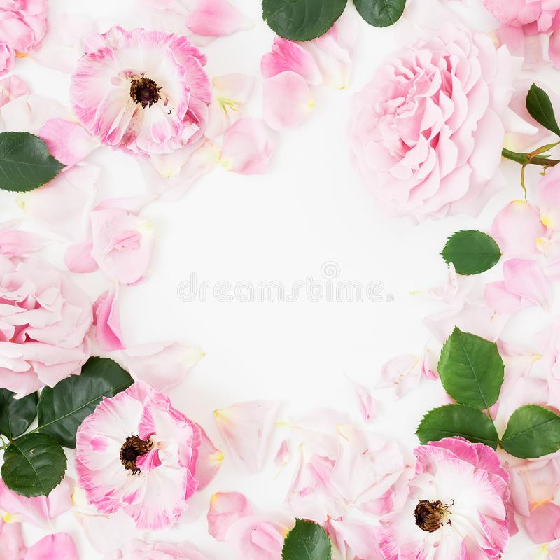Frame of pink flowers on white background. Floral lifestyle composition. Flat lay. Frame of pink flowers on white background. Floral lifestyle composition royalty free stock photos