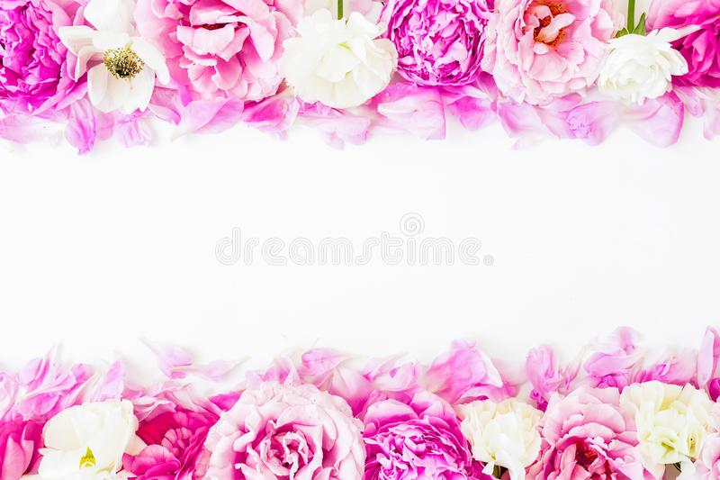 Frame of pink ranunculus flowers and roses on white background. Floral lifestyle composition. Flat lay stock image