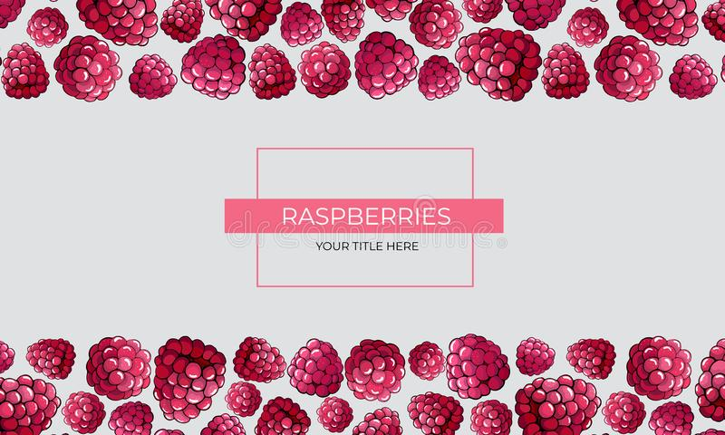 Frame of pink raspberry berries on top and bottom of the leaf vector illustration